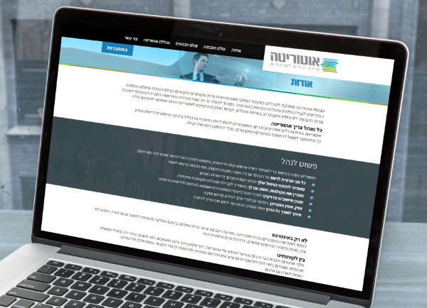 בניית אתרים לעסקים, עיצוב אתר מקצועי
