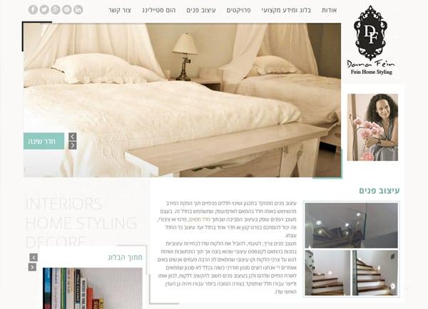 web3d, דנה פיין, הקמת אתר, פיתוח