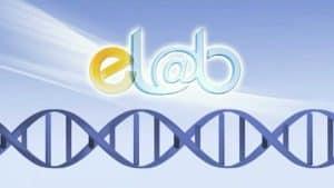Web3D - מיתוג עסקי - לוגו של elab