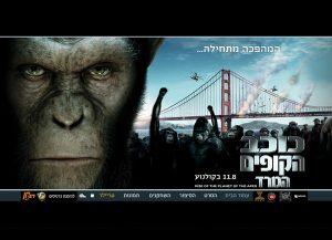 Web3d, מיניסייט כוכב הקופים, בניית אתר