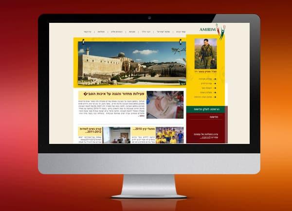 amirim, בניית אתר וירטואלי, בניית אתר לעסק קטן