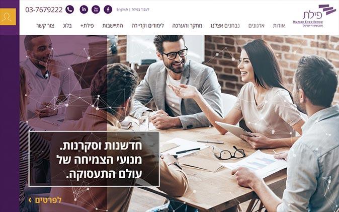 הקמת אתר אינטרנט: פילת תנומה ראשית של פרויקט