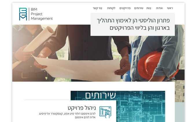 הקמת אתר אינטרנט: BPM תנומה ראשית של פרויקט