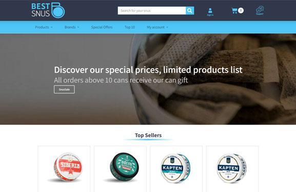 הקמת חנות ווירטואלית – חנות סחר: Best Snus תנומה ראשית של פרויקט